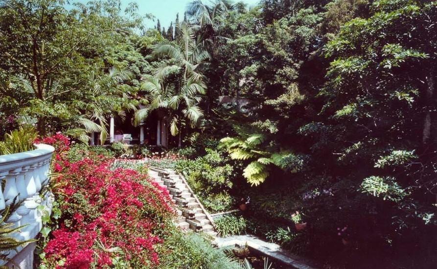 Residential Calypso Landscape